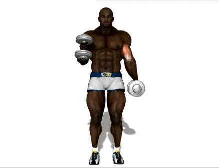 Como Malhar Braço Como Malhar Biceps